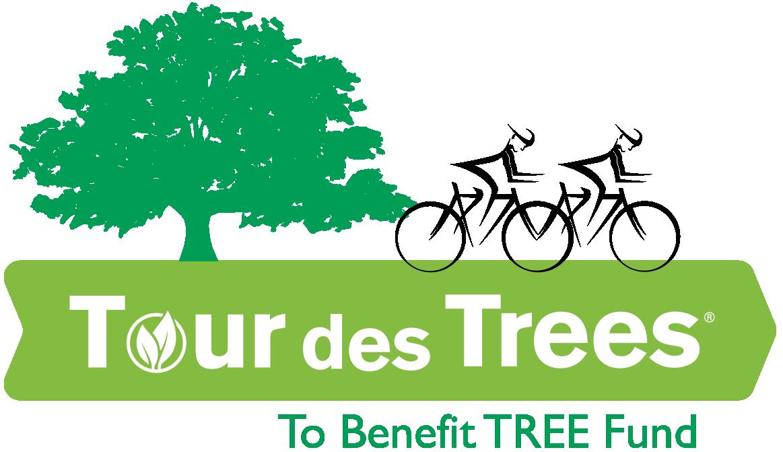 TDT-Logo.png