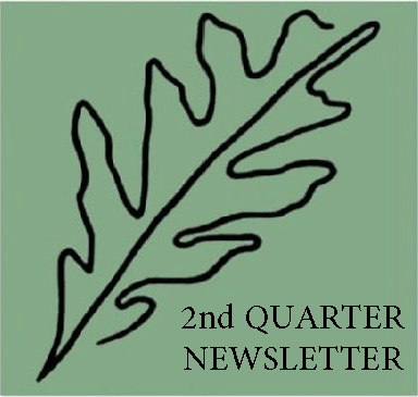 2nd quarter newsletter leaf.jpg