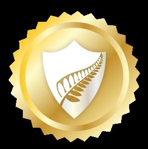 shield_cybersec.png