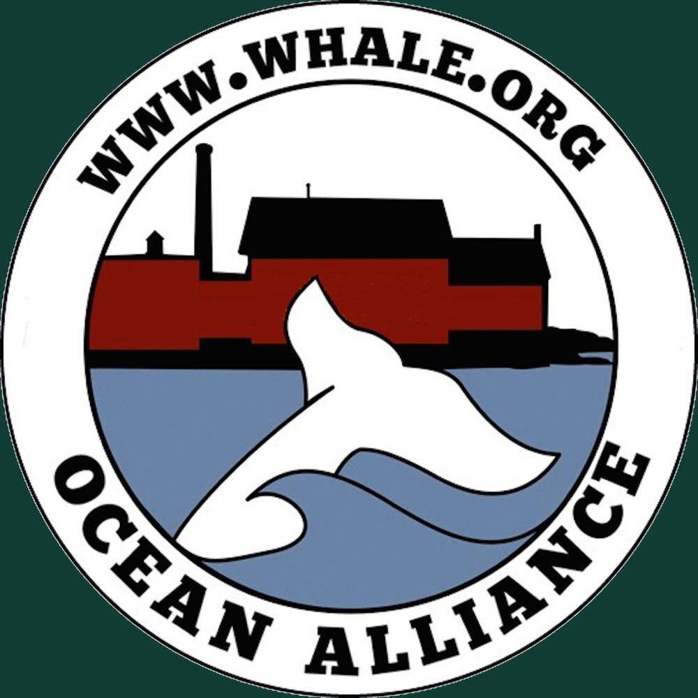 Ocean Alliance - Increasing public awareness of the importance of whale and ocean health through research and public education.