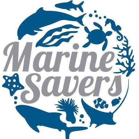 Marine Savers - Working with local environmental agency Reefscapers to run marine wildlife conservation projects.