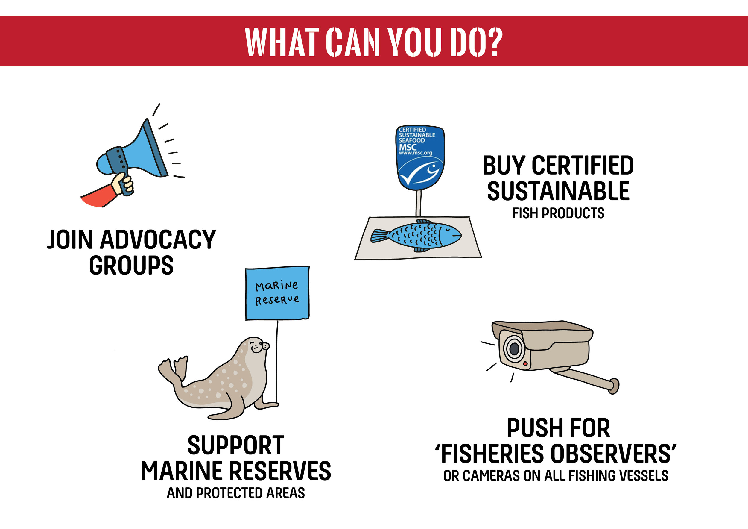 Fight Harmful Fishing - Eat less fish and always choose to buy certified sustainable seafood - look for MSC label.***Support 'no take' zones (marine reserves and protected areas) which provide marine life with a reprieve from fishing pressure.Push for 'ocean observers' on all fishing vessels to better monitor and regulate fishing practices.