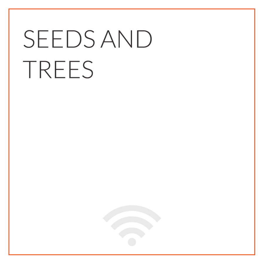 Better Together | Seeds and Trees.jpg