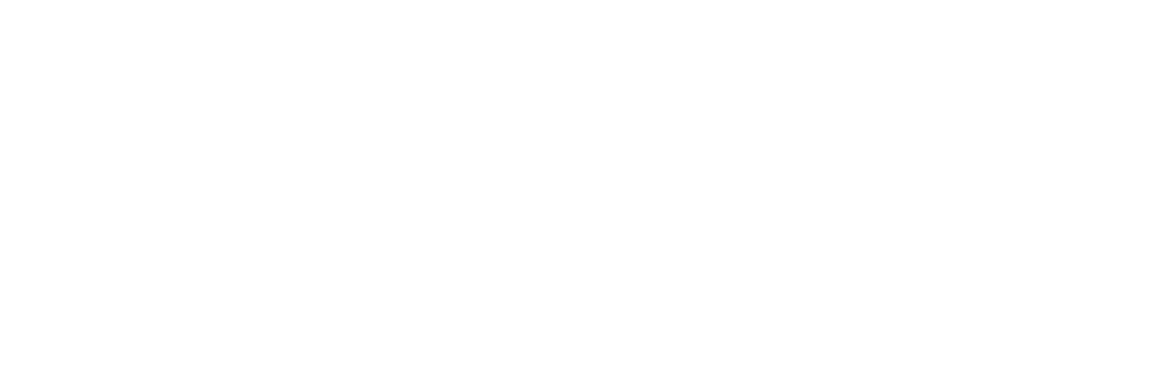 OAA Logo WHITE- EPS.png