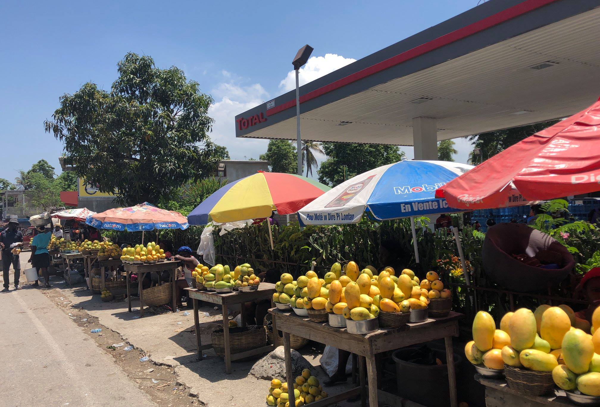 Beautiful mangoes produced by rural farmers being sold at a local market.