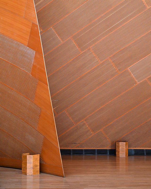 I can't get enough of this fir wood used throughout the Disney Concert Hall, it has a beautiful color to it 🧡 ••• •• • #architecture #architecturephotography #design #architect #frankgehry #losangeles #la #california #dtla #orange #wood #disney #interiordesign #acousticpanels #wall #creative_architecture #artofvisuals #architecturedaily #architecturelovers #architecture_hunter #architecture_magazine #architecturewatch #architectureporn #architectureview #buildingswow #jj_geometry #archi_features #ptk_architecture