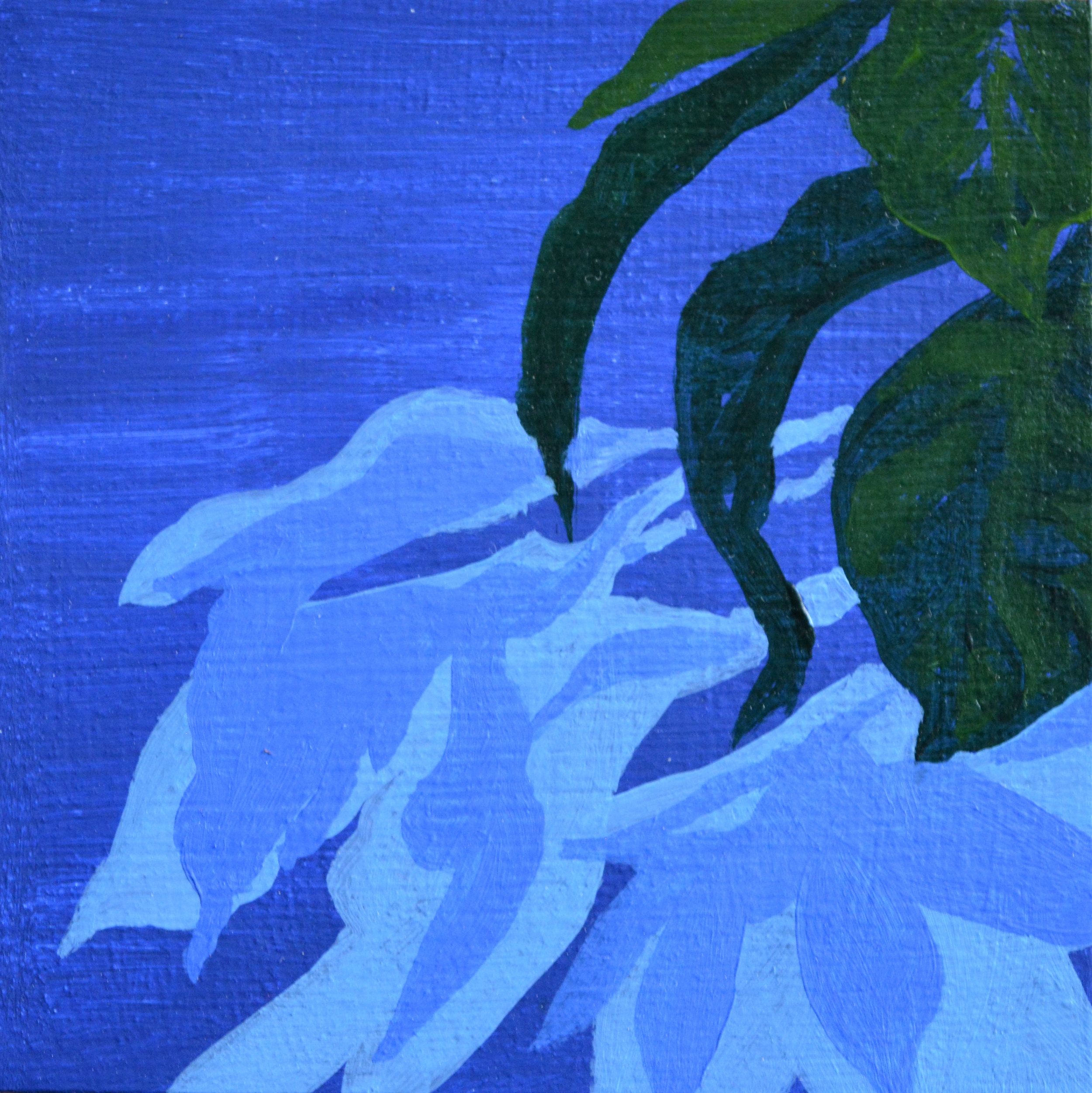 Shadow Play 1  4 x 4 inches, oil and acrylic on wood panel, 2018