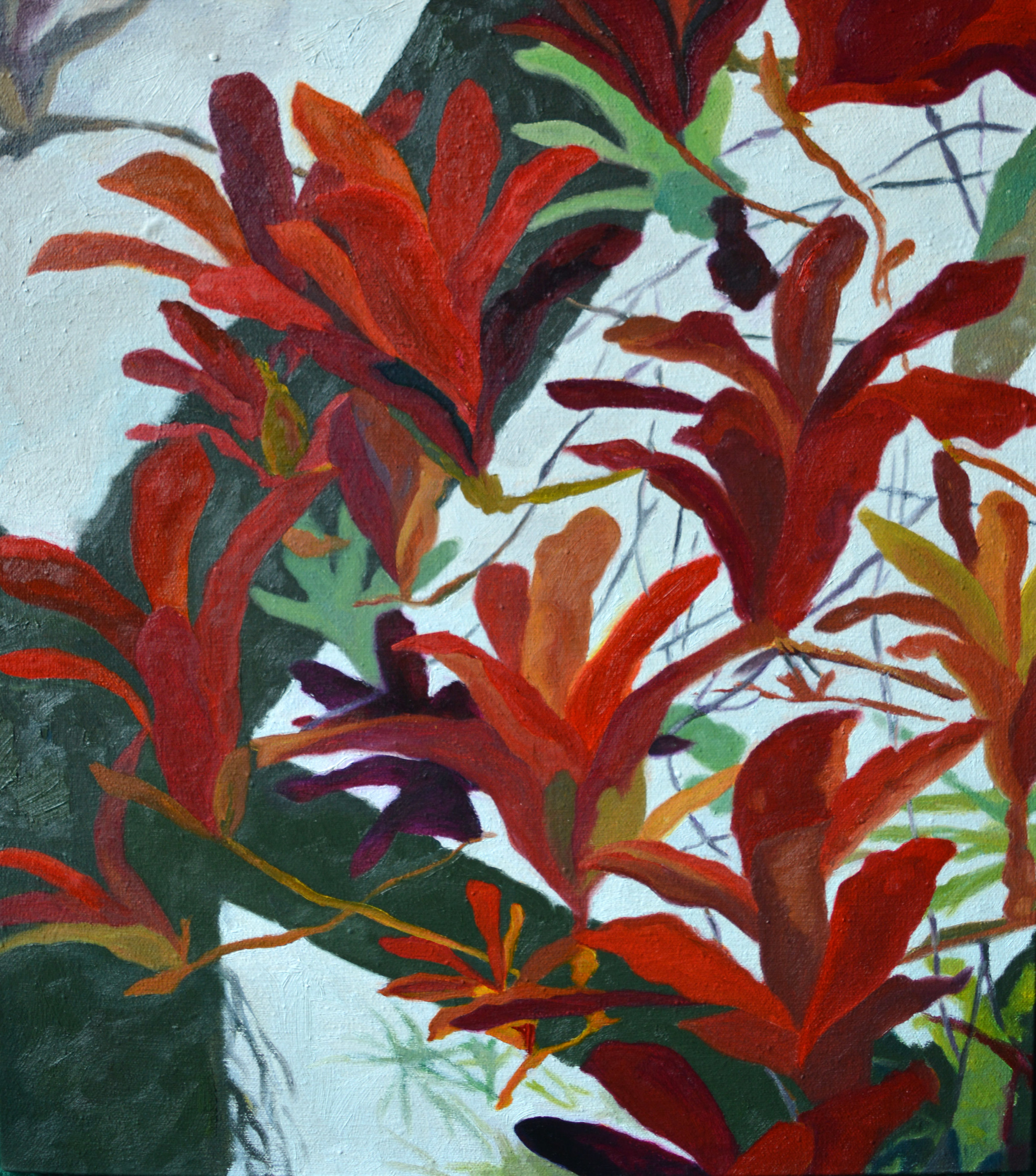 Bromeliad Conservatory  18 x 16in, oil on canvas