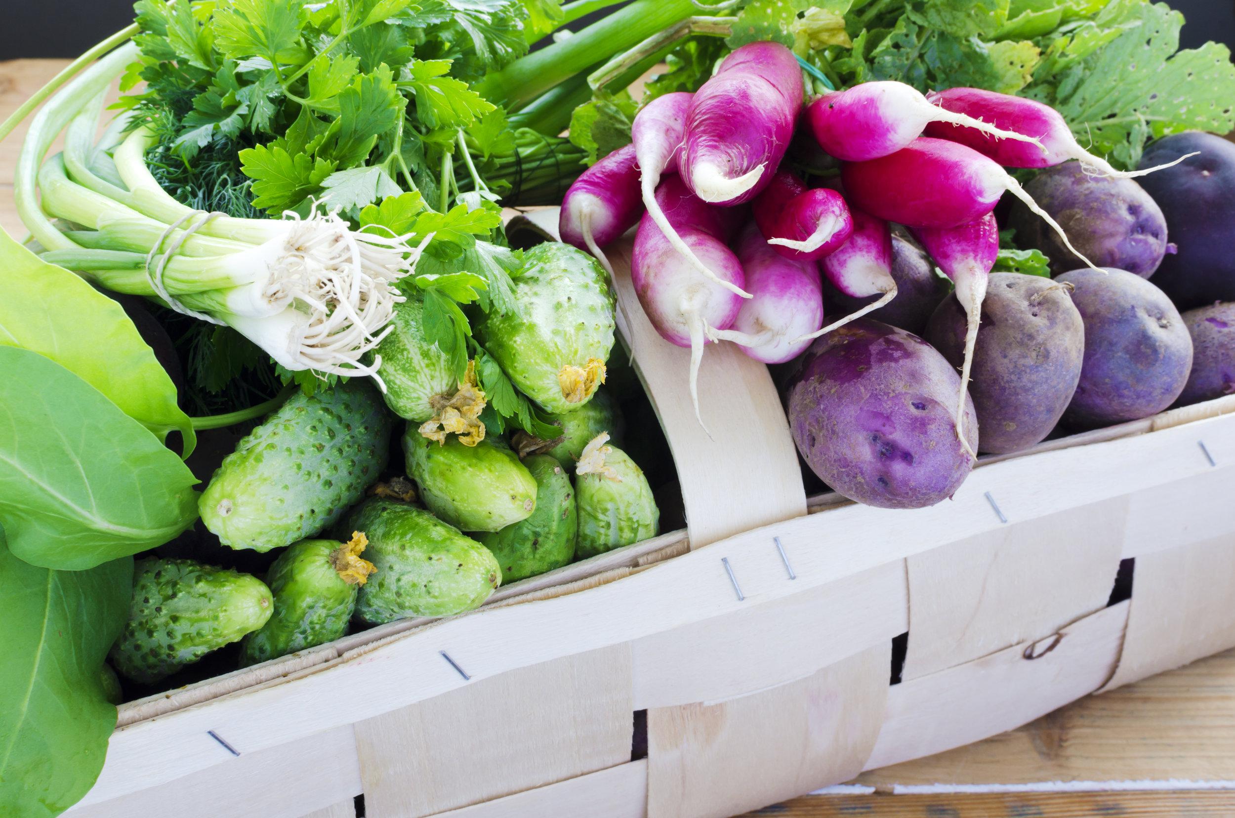 Fresh-vegetables-in-the-wooden-veneer-basket-489909991_4928x3264.jpeg