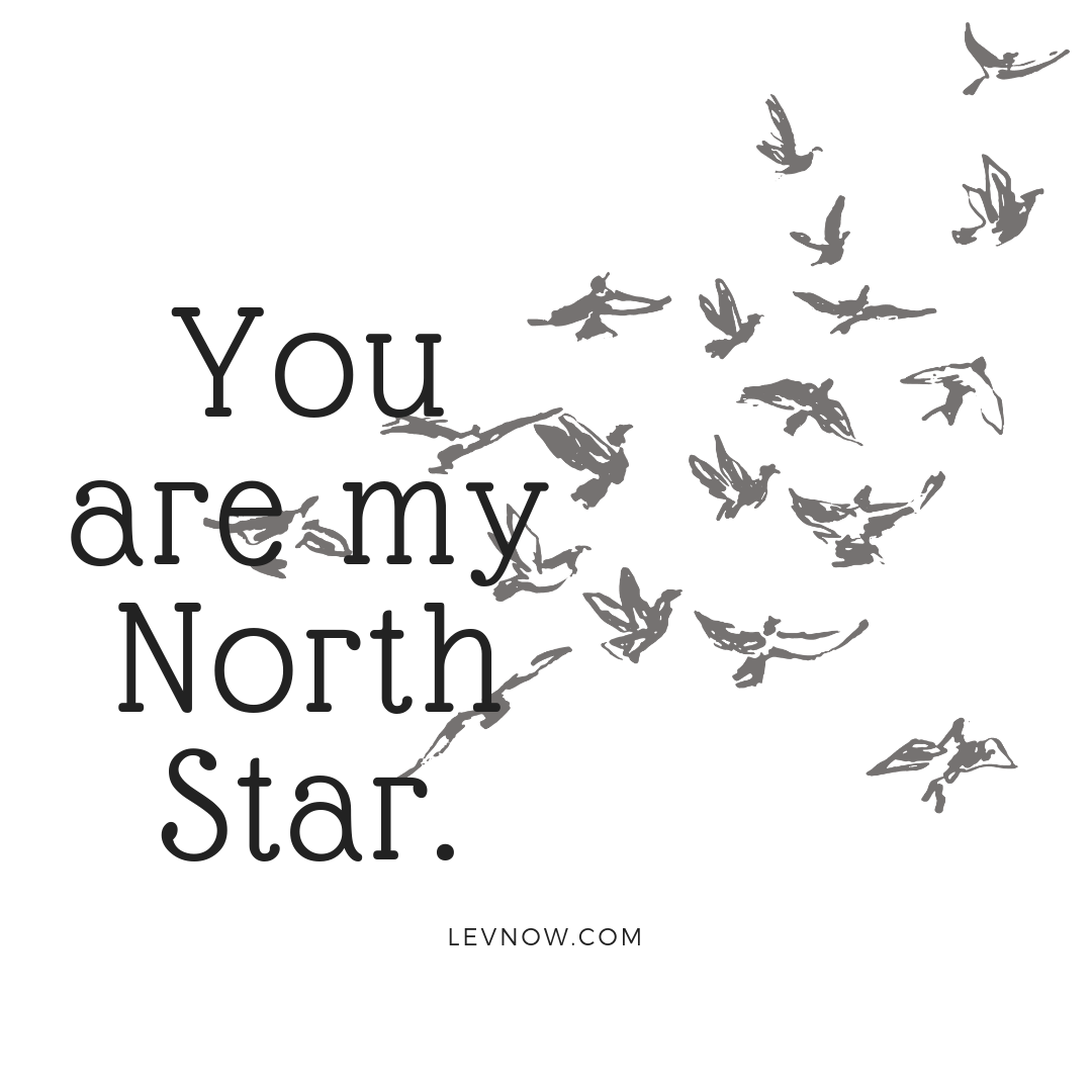 You are my North Star-Levnow.png