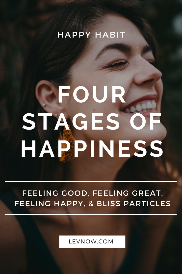 four-stages-of-happiness-levnow.jpg