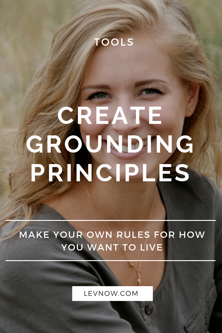 create grounding principles levnow.png