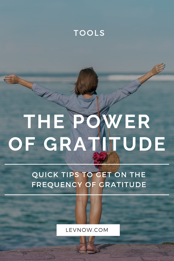 Frequency of gratitude - the power of gratitude - Levnow.png