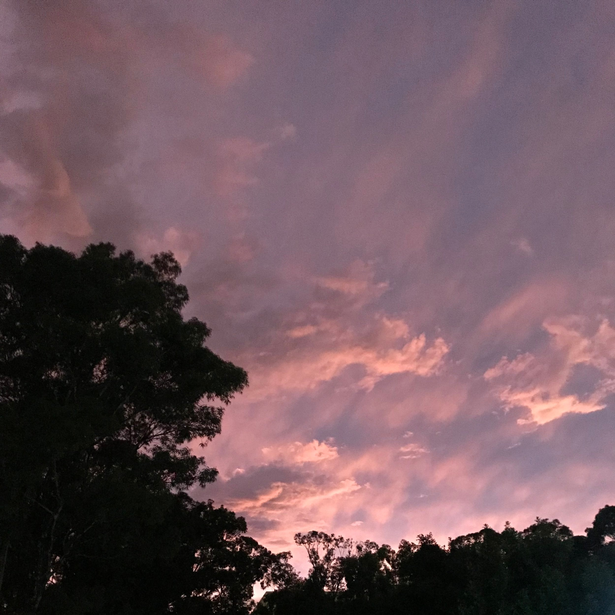 sunrisestorm