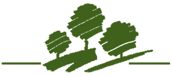 burnham-logo-green.png