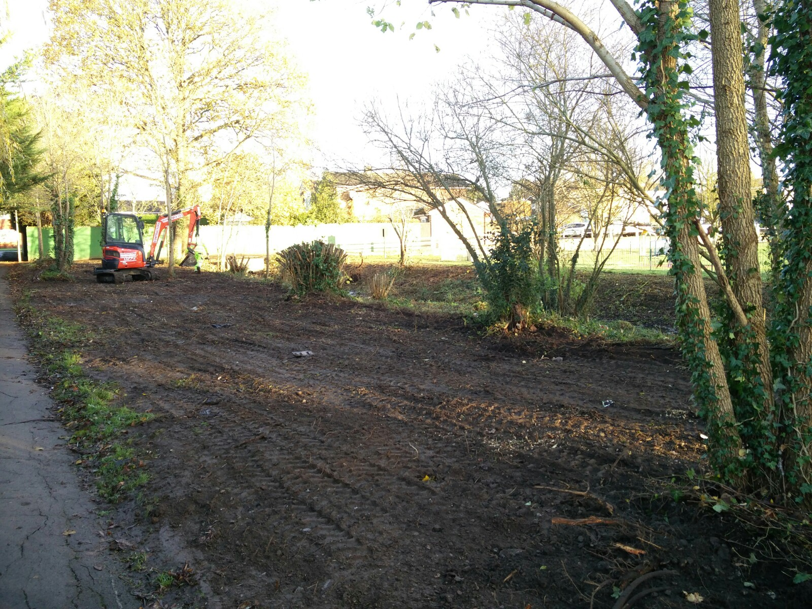 Wild play area after clearance