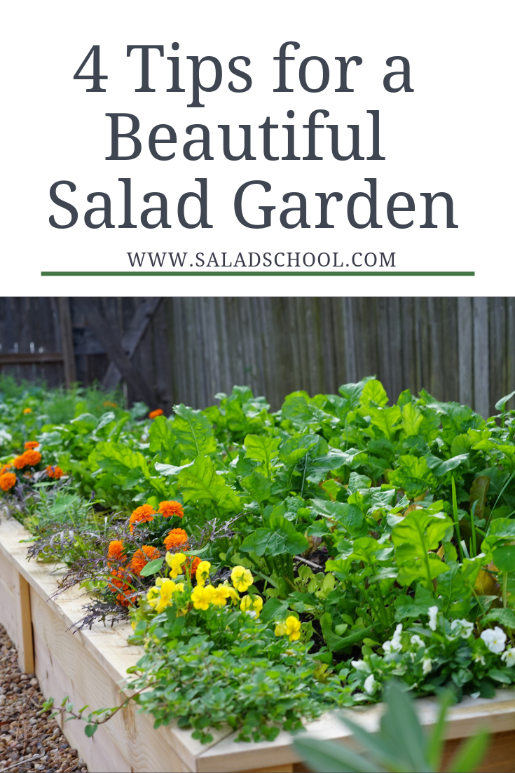 4 Tips for a Beautiful Salad Garden