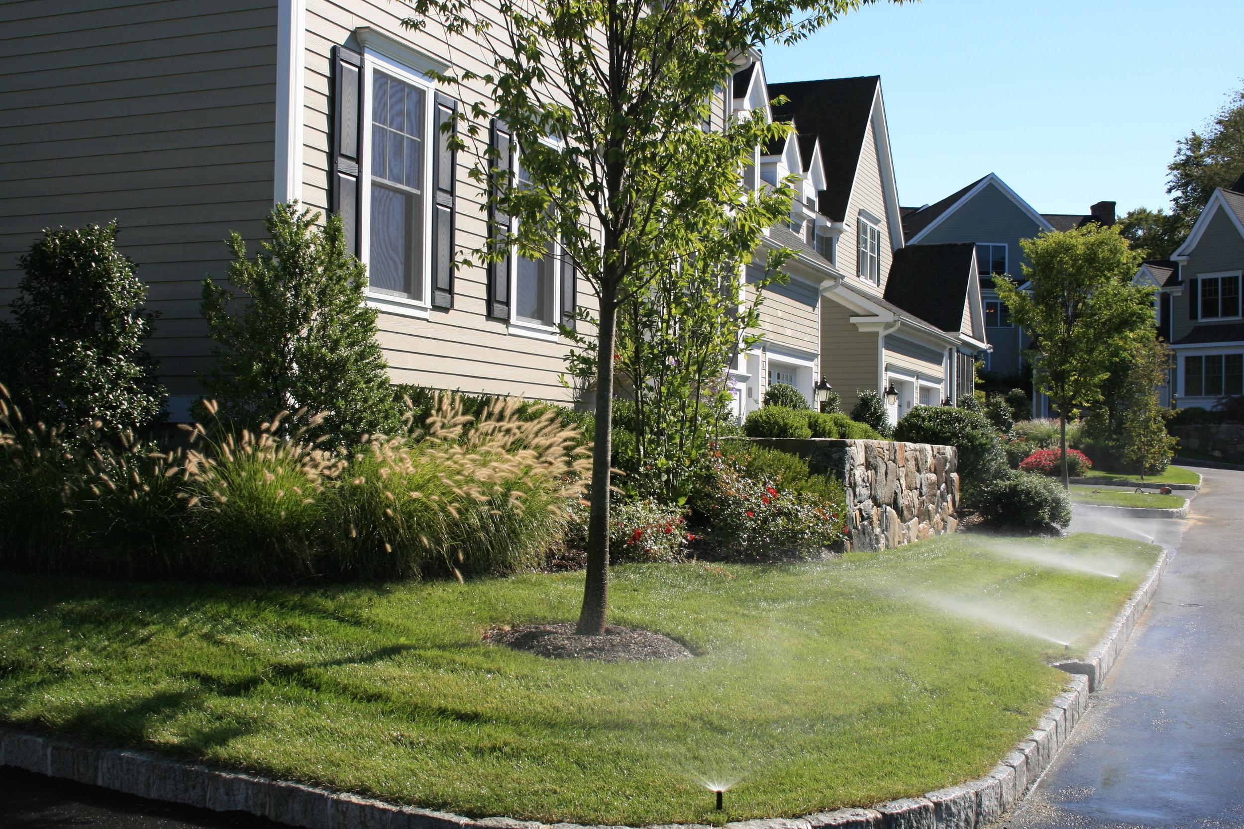 River Oaks Residence2.jpg