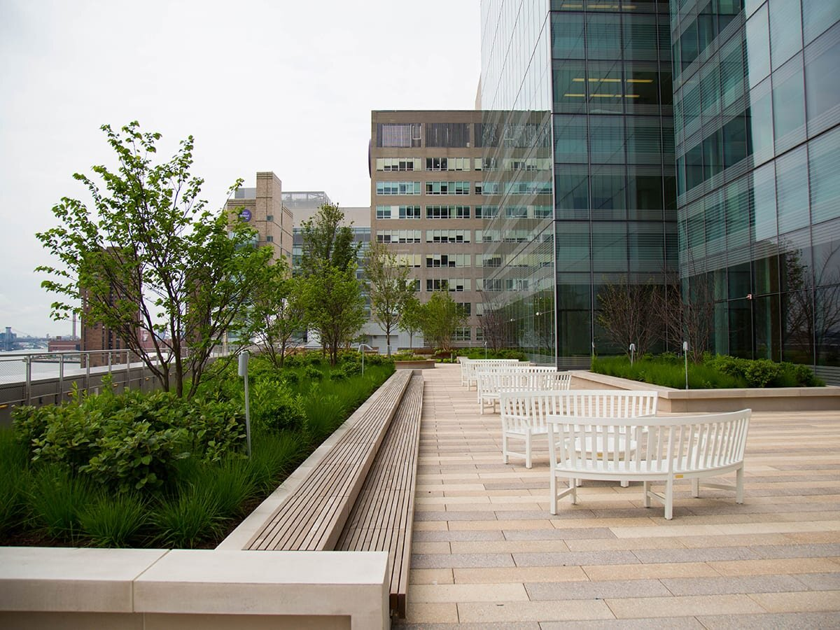 NYU Medical Center, Kimmel Pavilion, NYC - Natlawn was trusted to help irrigate NYU Langone's roof terrace and gardens, as a way to improve the wellness of patients and their families and enhance the quality of their experience.
