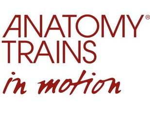 Layout_Logo_AT_in_Motion(1)-540x420.jpeg