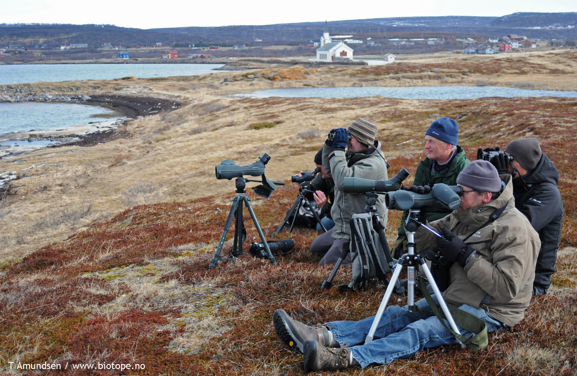 Birders visiting Varanger - the most well known arctic birding destination in the world.