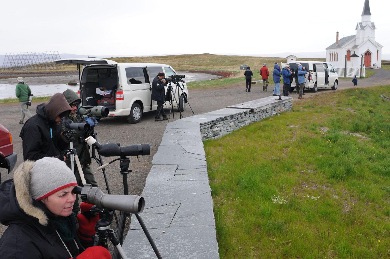 Birders visiting Varanger