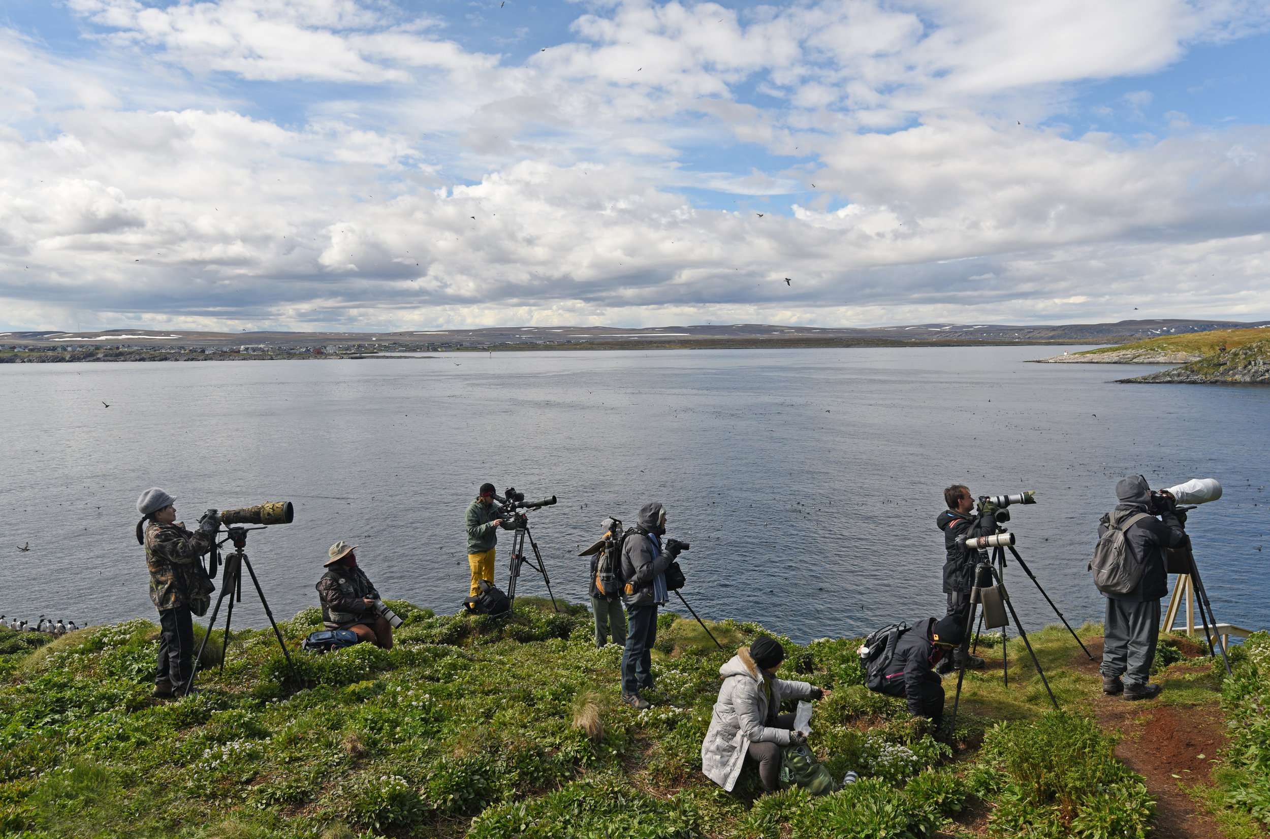 birders in Varanger at Hornøya bird cliff june 2015 med res u sign - Amundsen © Biotope.jpg