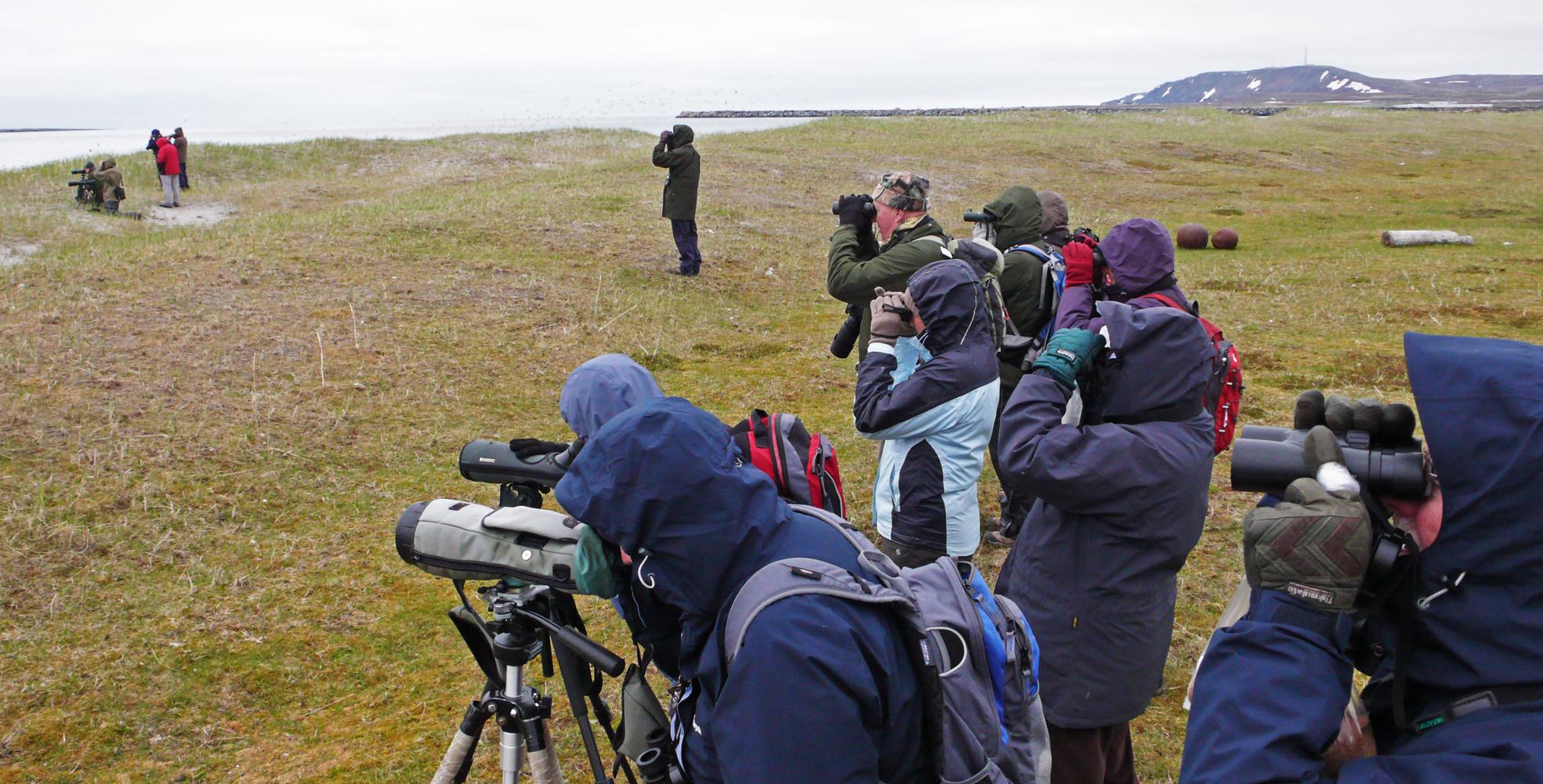 birders ramblers varanger juni 2011.jpg