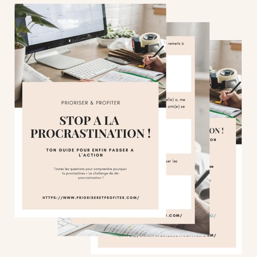 Mockup+stop+%C3%A0+la+procrastination.jpg