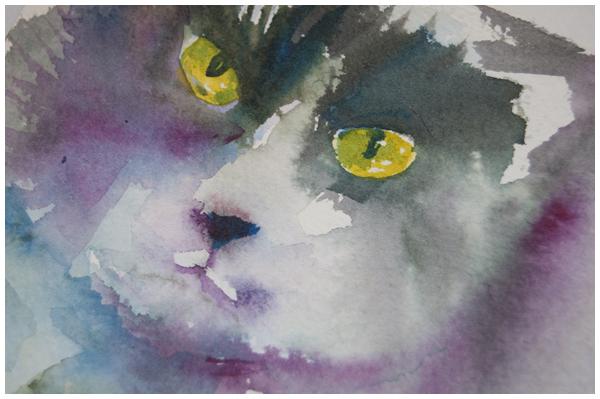 cat-sketch2.jpg