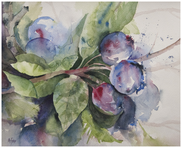 Saskatoon Study watercolor by Angela Fehr