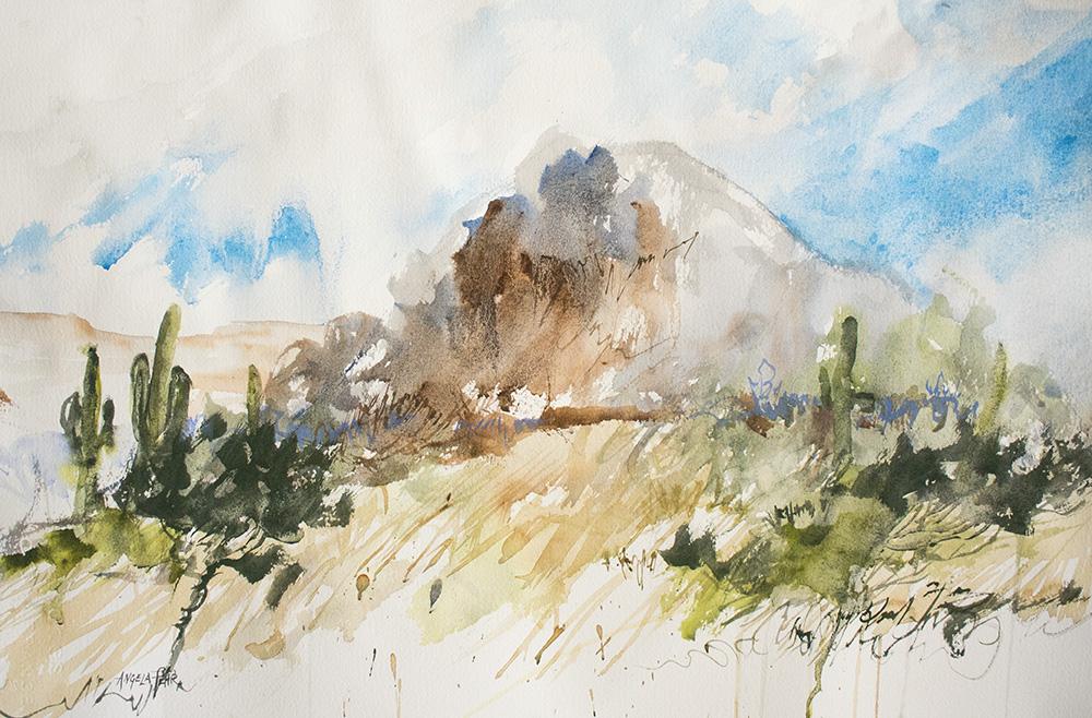 Saguaro in the Park