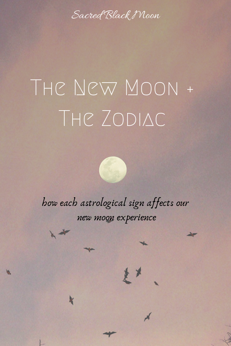 New Moon & The Zodiac