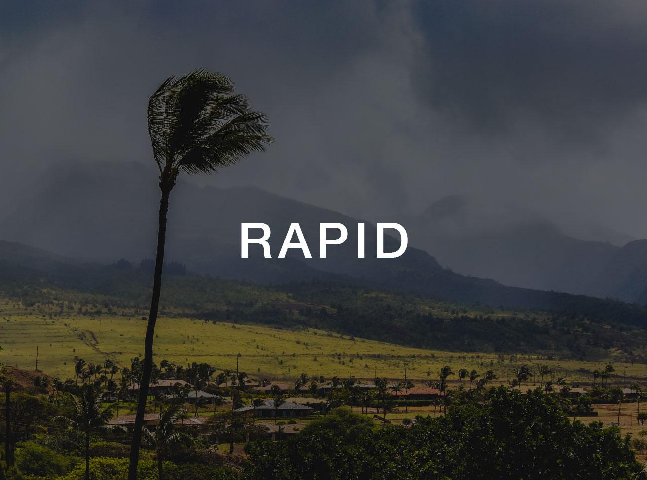 rapid-small.jpg