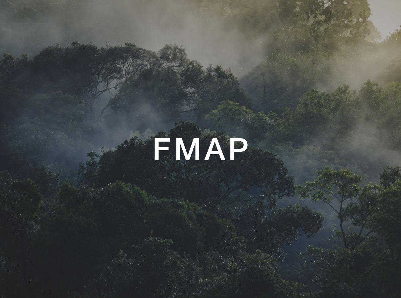 fmap-small.jpg