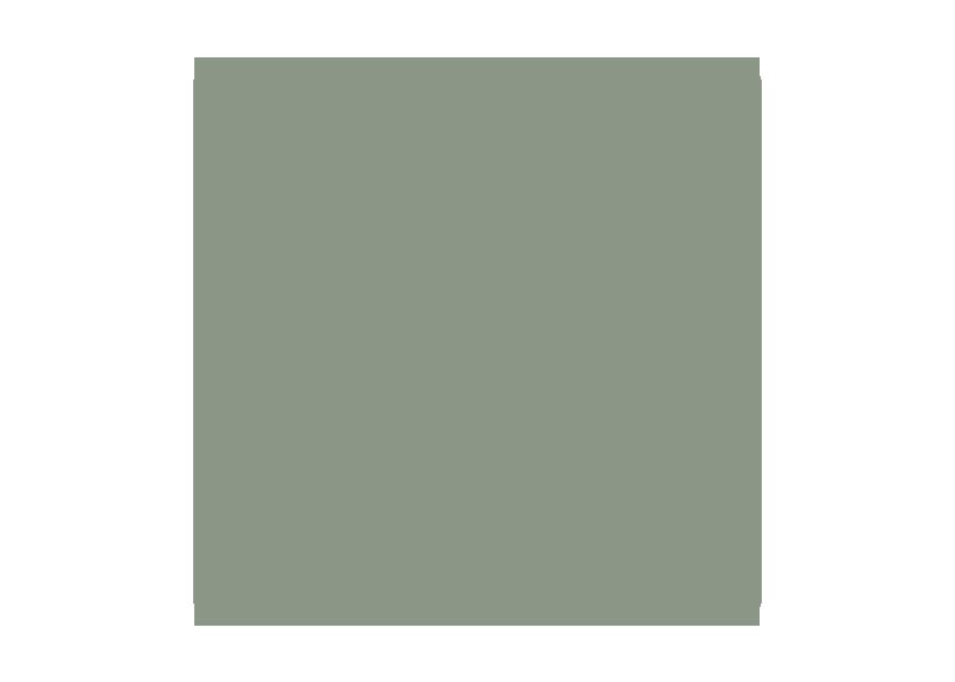 Facebook-green.png