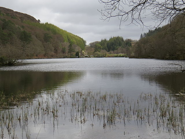 llyn mair (PHOTO CREDIT: WIKIPEDIA)