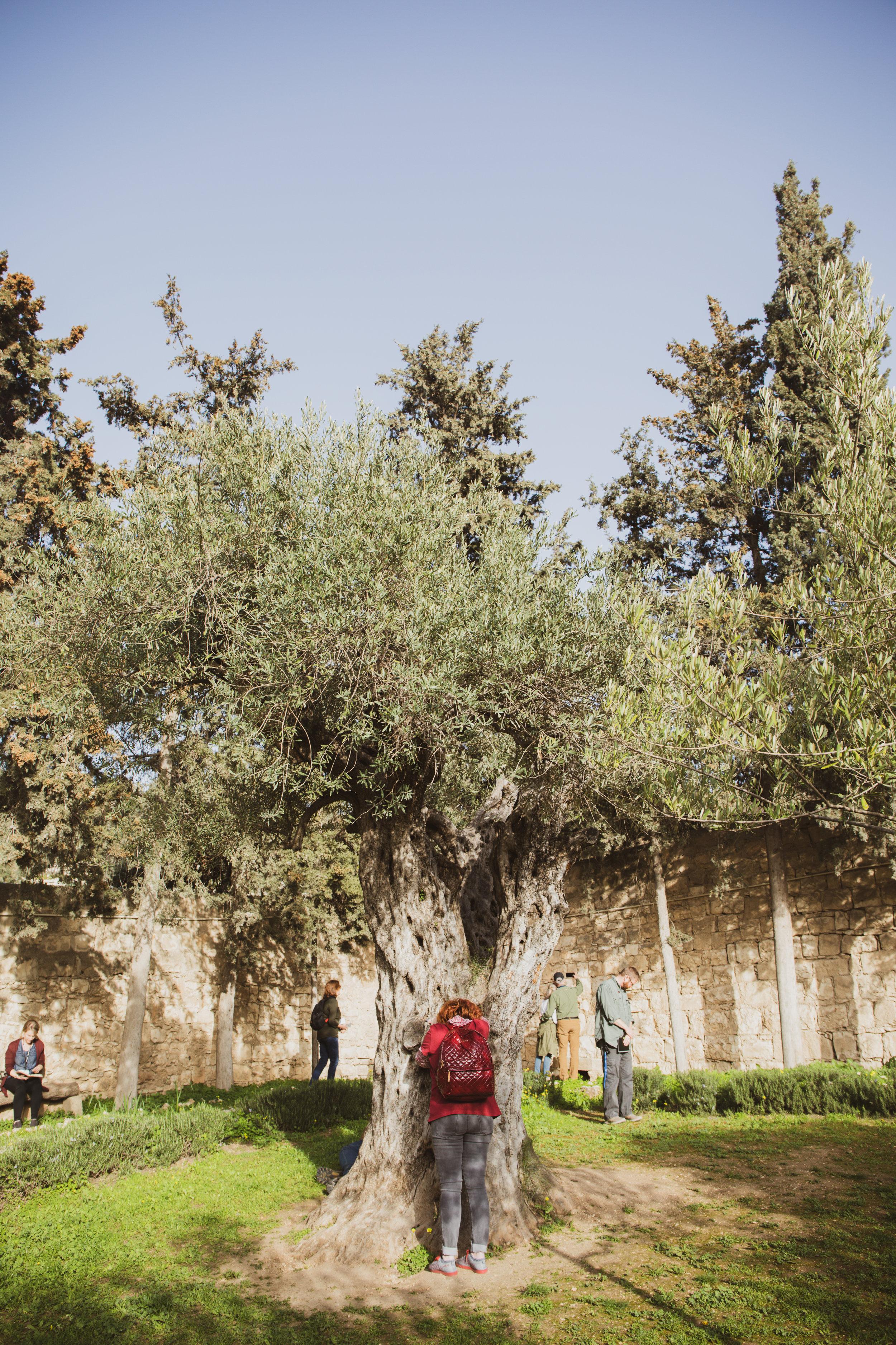 Israel_081.jpg