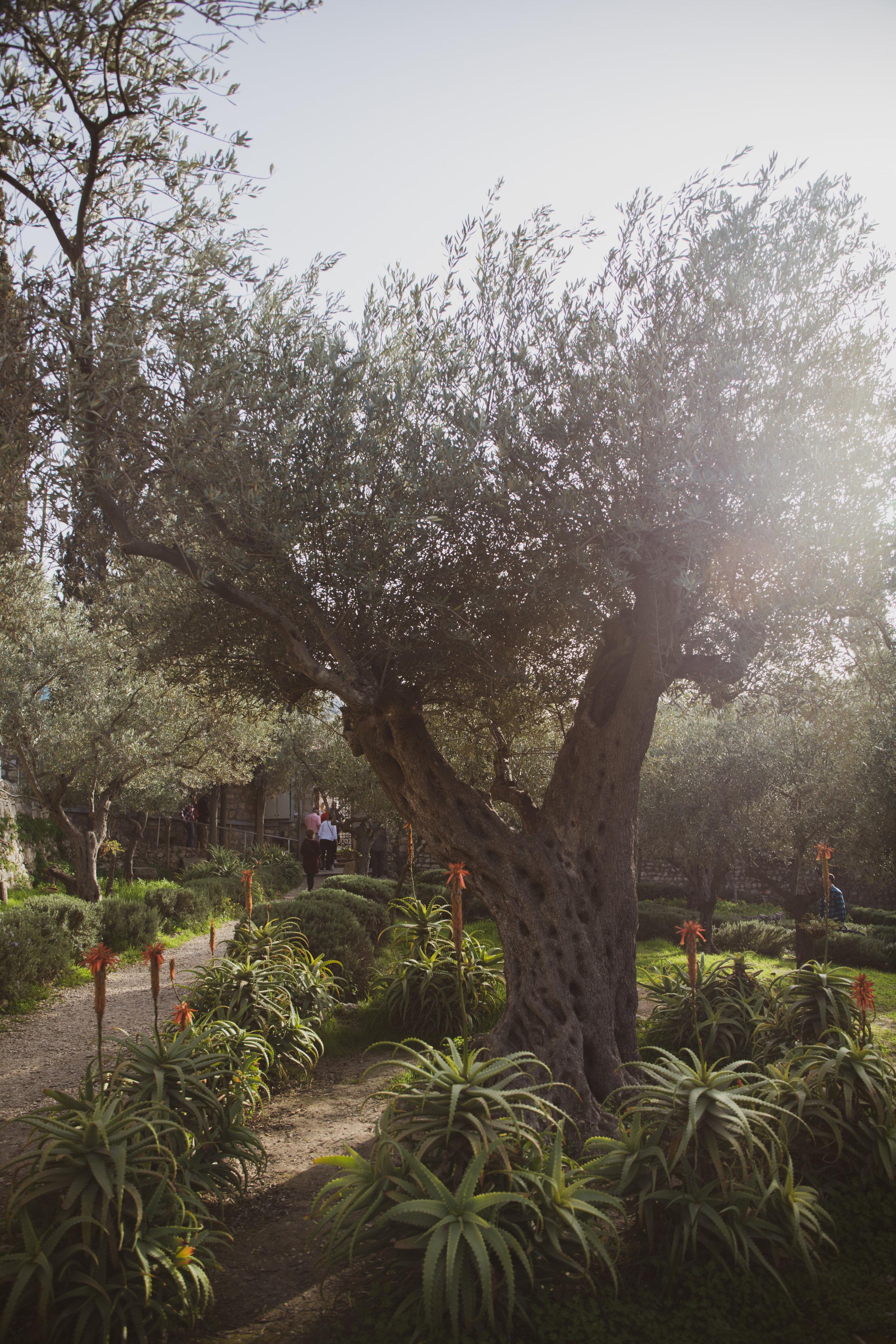 Israel_085.jpg