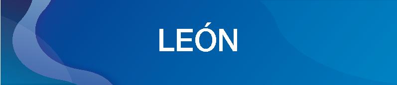 LEON-14.png