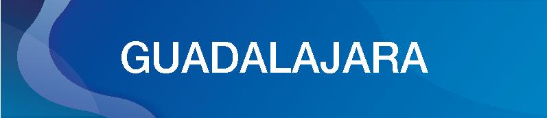 GUADALAJARA-10.png