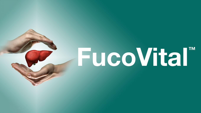 FucoCurrent8.15.19_FORMATTED_FOR_WEBSITE.jpg