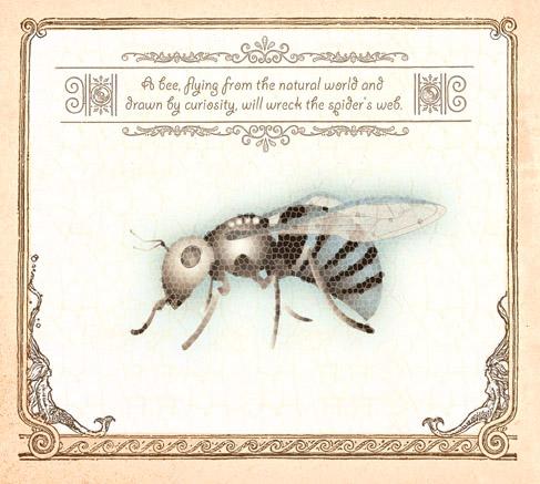 buzz_bee.jpg