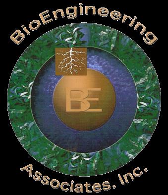 BE-Logo-lg-trans_2.png
