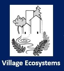 Villaghe eco 2.jpg