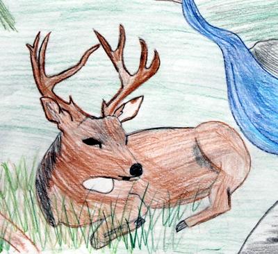 deer_very_nice.jpg