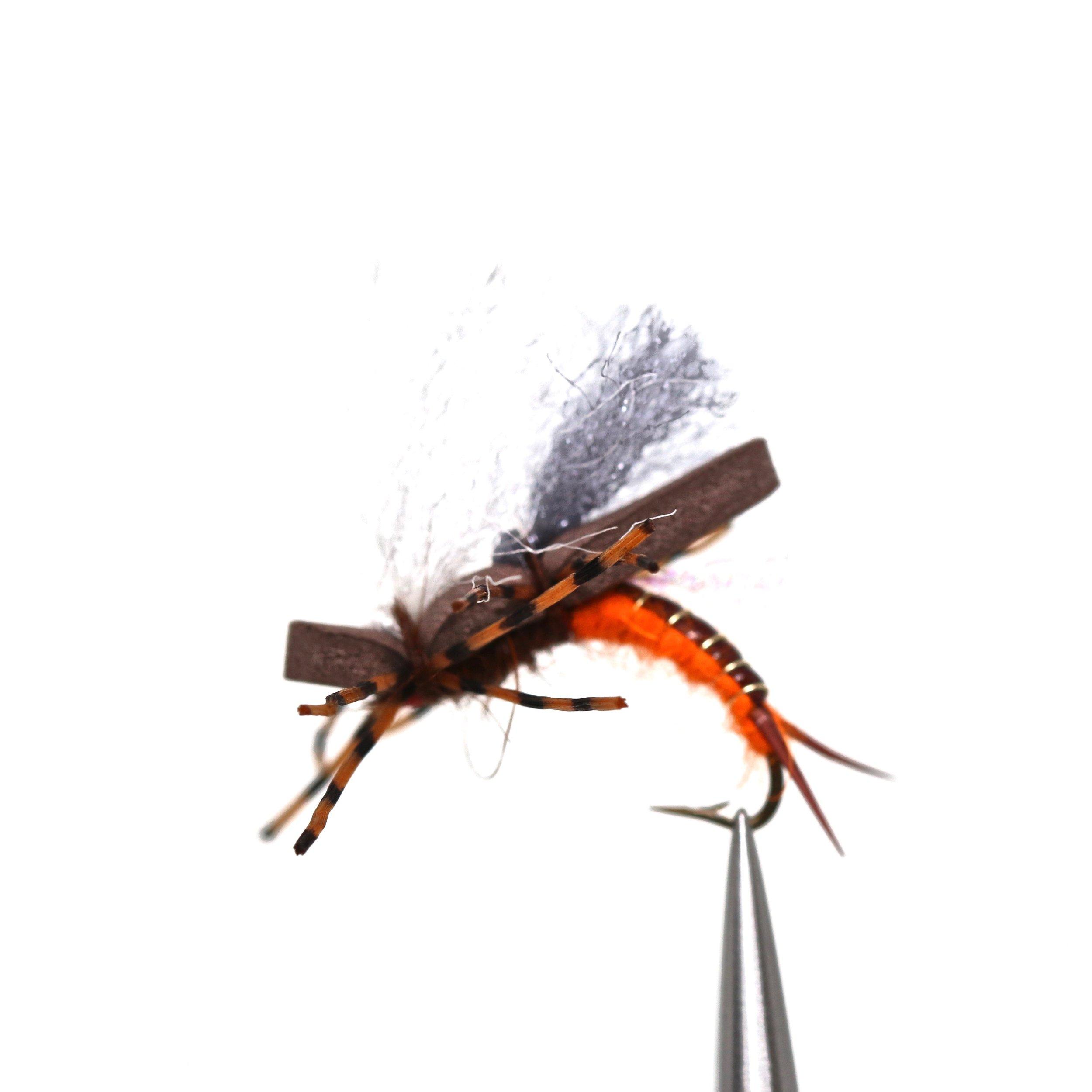 Saligas Low Rider Salmon Fly:  https://ironbowflyshop.ca/products/saligas-low-rider-salmonfly