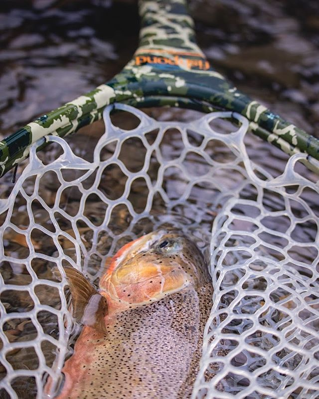 There is something special about cutthroat country. Hope everybody got a couple this weekend! #flyfishing #trout #cutthroat #explore #alberta #flyshop #yyctravel #yycflyfishing #alberta #canada #tugisthedrug #dryflyjunkie