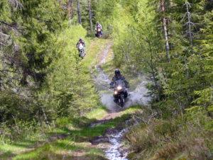 3-MC-i-skogen_mini-300x226.jpg