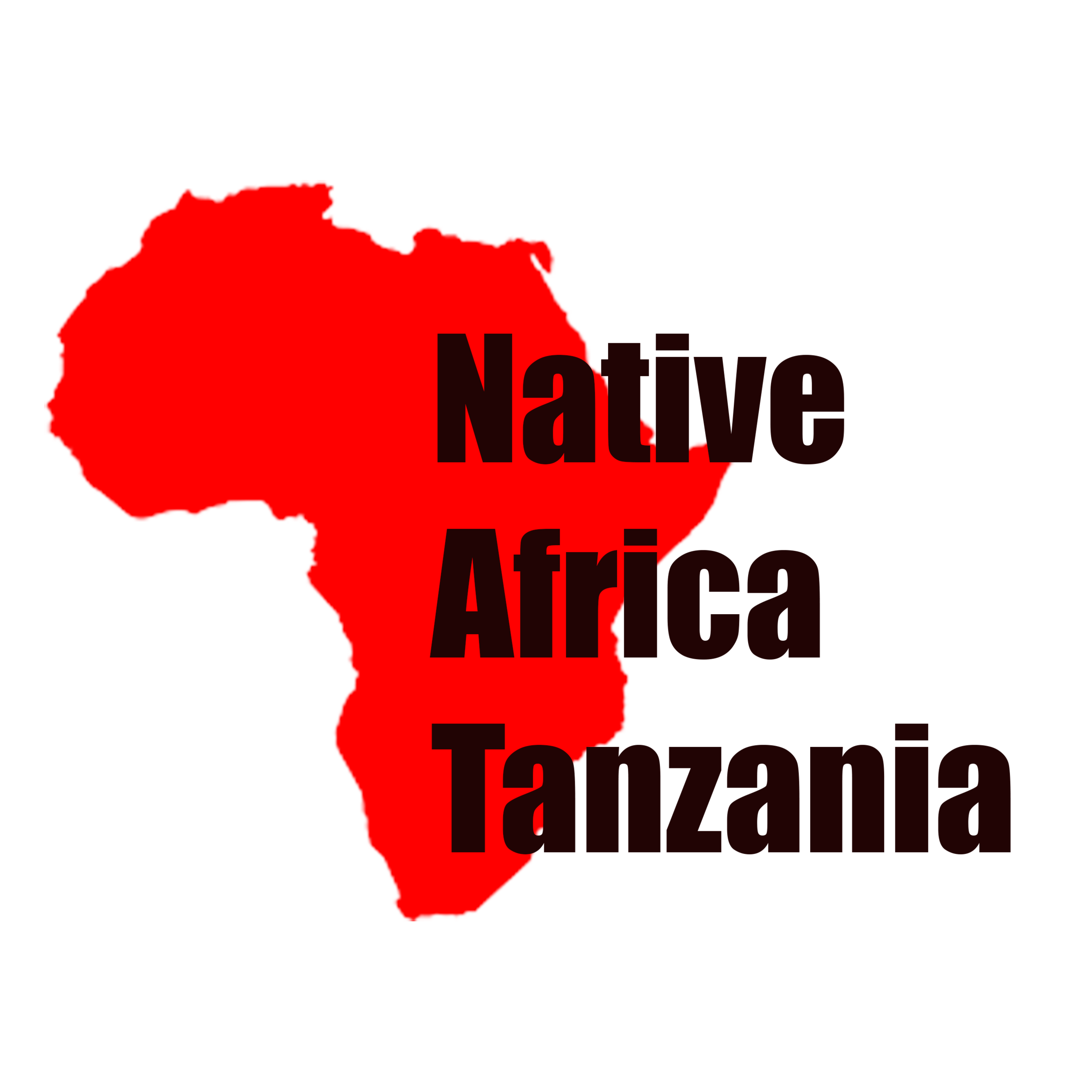 Native Africa Logo.png
